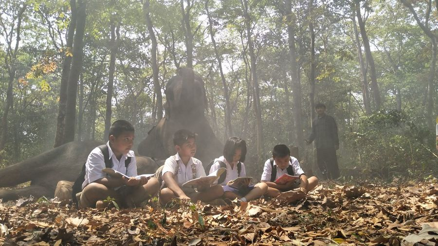 People sitting on land in forest