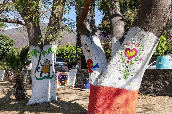 Ajijic Art Creativity Day Graffiti Graffiti Trees Lake Chapala Mexico Nature No People Outdoors Travel Destinations Travel Photography Tree Tree Trunk