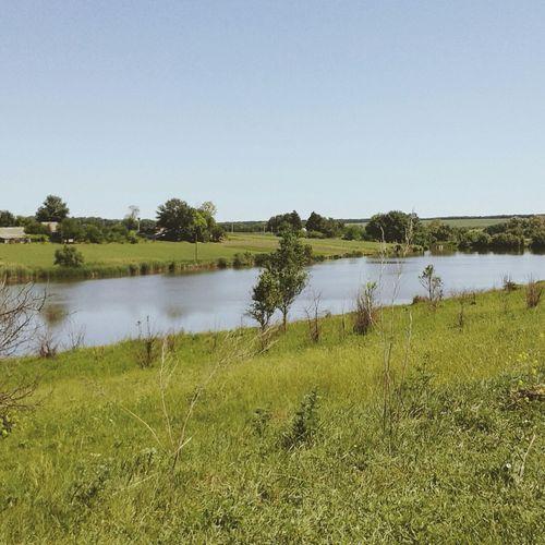 Ставок озеро лето сонуе красота день Пейзажи