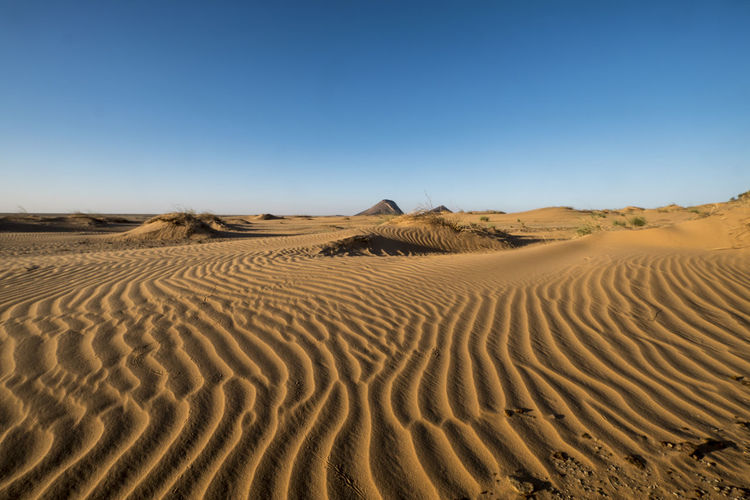Shapes, lines and patterns at great dune in the sahara desert in the afternoon light