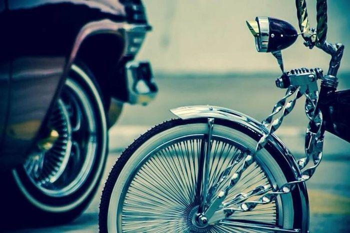 Enjoying Life Taking Photos Bike Ride