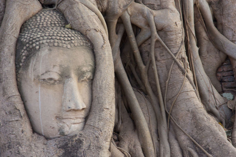 Ancient Ancient Civilization Bas Relief Close-up Day Nature No People Outdoors Religion Sculpture Spirituality Statue Travel Destinations