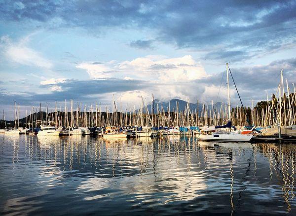 Harbour Harbourside Sailing Sailing Ship Sailing Boats Lake Lakeside Lake Lucerne Lucerne
