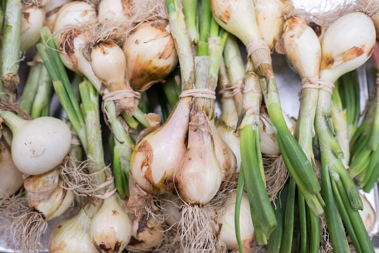 Close-Up Of Scallions For Sale