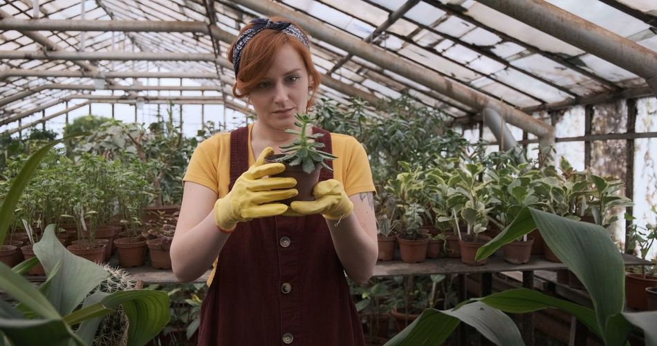 Young female gardener holding a succulent plant