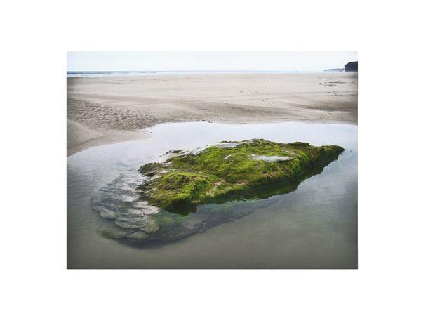 Beach Nature Coastline Beach Green Stone In Water Puddle Sand Sea Water EyeEmNewHere