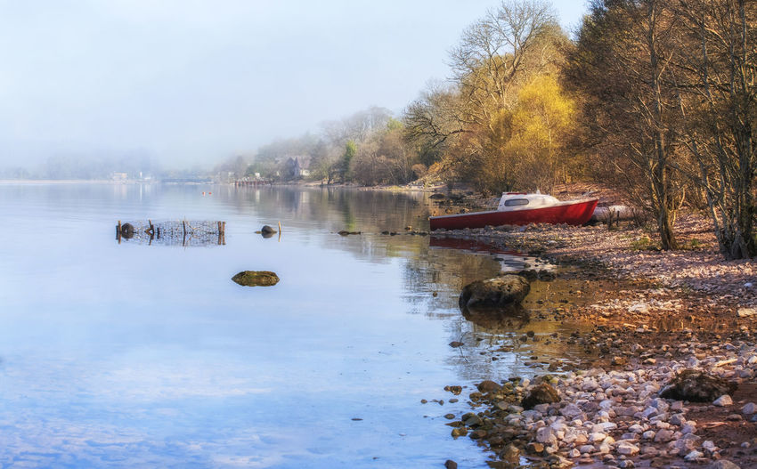 Early foggy morning at Loch Ness Lake, Scotland, UK Beauty In Nature Boat Day Fog Fog Over Water Foggy Foggy Morning Lake Loch Ness Lochness Nature Nautical Vessel Ness Nessy No People Outdoors Reflection Reflection Scenics Scotland Sky Transportation Tree Uk Water
