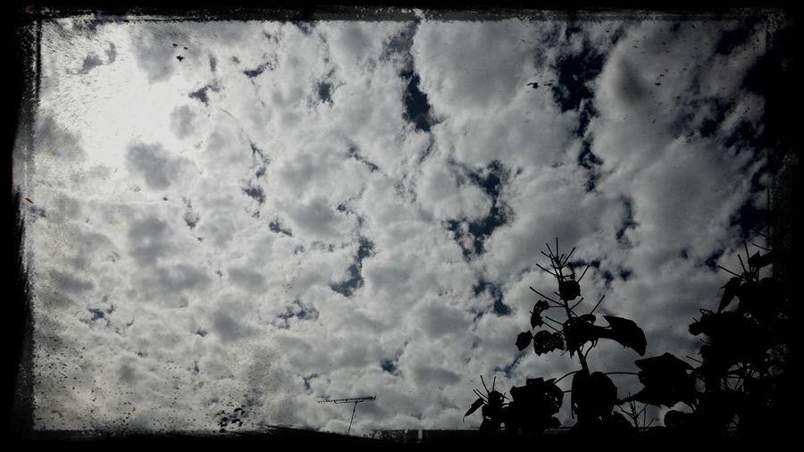 kumo and suifuyou Clouds
