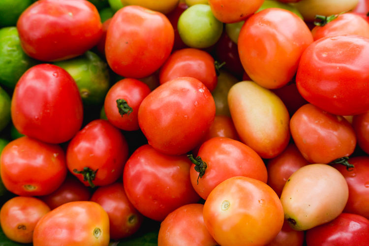 Abundance Backgrounds Close-up Food Food And Drink For Sale Freshness Fruit Full Frame Healthy Eating Large Group Of Objects Market No People Red Retail  Ripe Sale Still Life Tomato Vegetable Wellbeing
