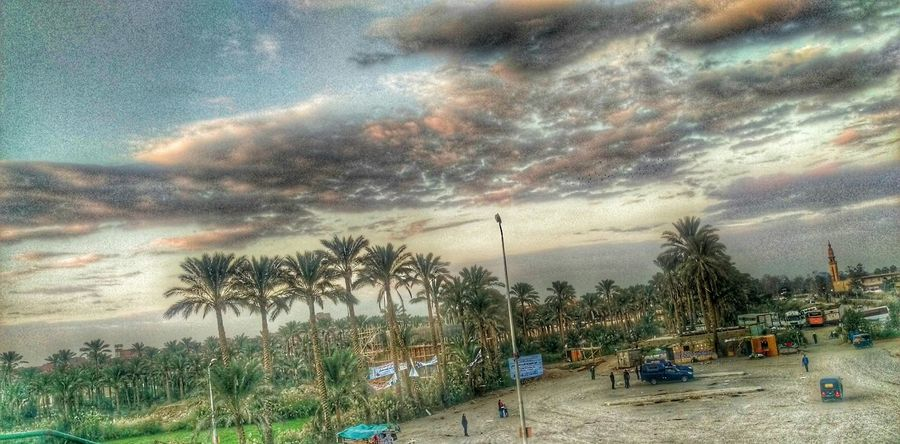 HDR ❤ Hanging Out Taking Photos Check This Out Hi! Seeing The Sights Enjoying Life Photography Mobile Photography Hdrphotography Perfection Taking Photos Cairo Egypt
