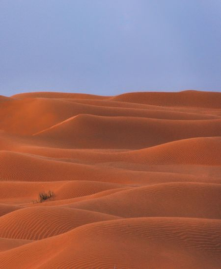 This is the blue hour moment in the great sahara in north africa