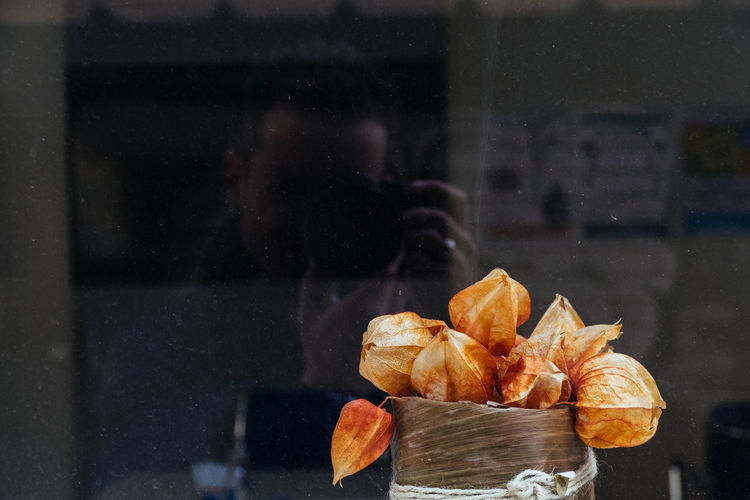 Reflection of man photographing winter cherries on glass