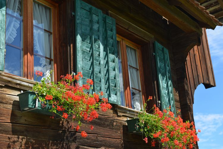 Architecture Building Building Exterior Built Structure Day Flower Flower Pot Flowering Plant Fragility Growth House Low Angle View Nature No People Outdoors Plant Residential District Window Window Box Window Frame Wood - Material