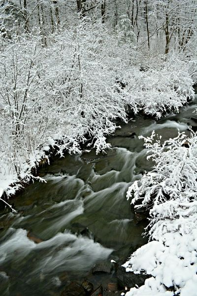 Water_collection Waterscape Nikon D7100 Winter Winter Wonderland Stream Pennsylvania Beauty Outdoor Photography Nature Slow Shutter
