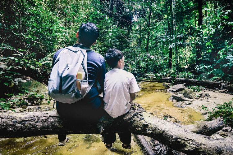 Rear view of men walking on rock in forest