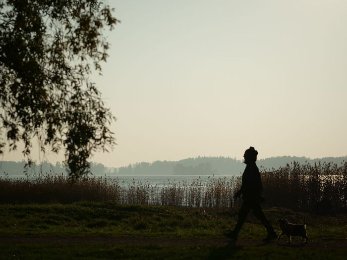 Walking the dog Water Nature Real People Walking Dog Sky Tree Silhouette Autumn Outdoors Lake Plant Finland Beauty In Nature Lifestyles One Person Domestic Domestic Animals One Animal Canine Pet Owner Gh5