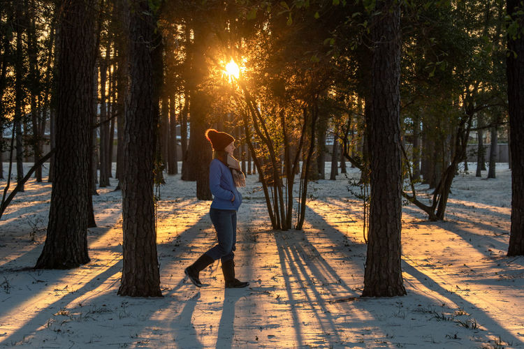Man standing by trees in forest during sunset