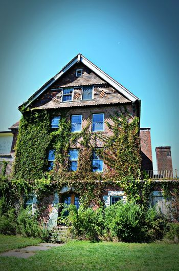 Abandoned Buildings Architecture Blue Building Exterior Built Structure Clear Sky Growth Low Angle View