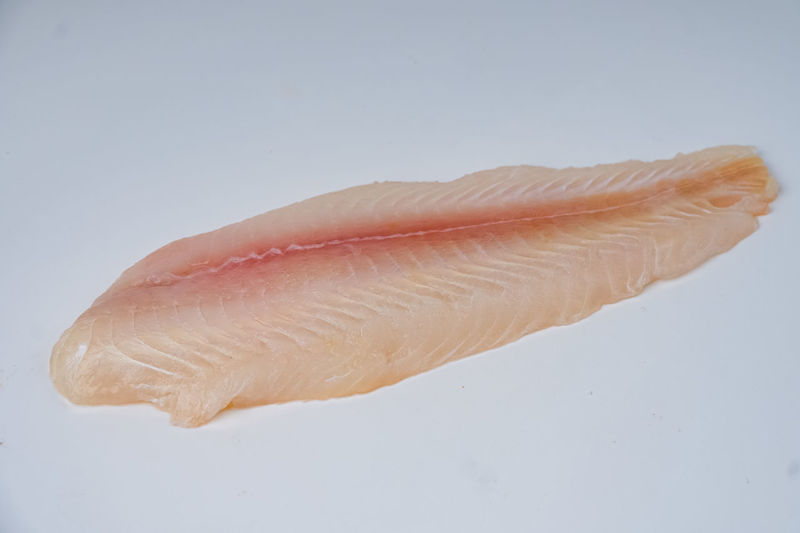 Close-up of fish on white background