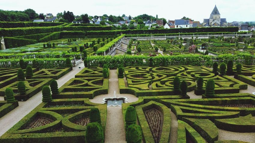 Agriculture Growth Green Color Outdoors No People Rural Scene Day Nature Tree Sky Pattern Villandry Castle Chateau De Villandry Villandry Chateau Villandry Villandry Gardens Vacations Travel Destinations Beauty In Nature Field Nature Growth Grass Green Color High Angle View