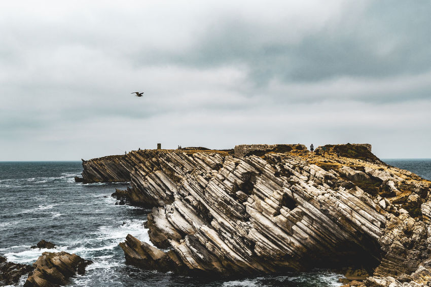 Sea Water Sky Cloud - Sky Rock - Object Rock Formation Rock Solid Beauty In Nature Land Scenics - Nature Nature Beach Motion Animal Animal Themes Bird Horizon Horizon Over Water No People Outdoors Stack Rock