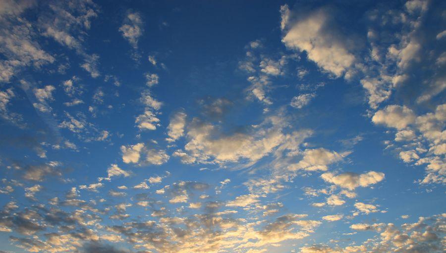 Clouds. Sky