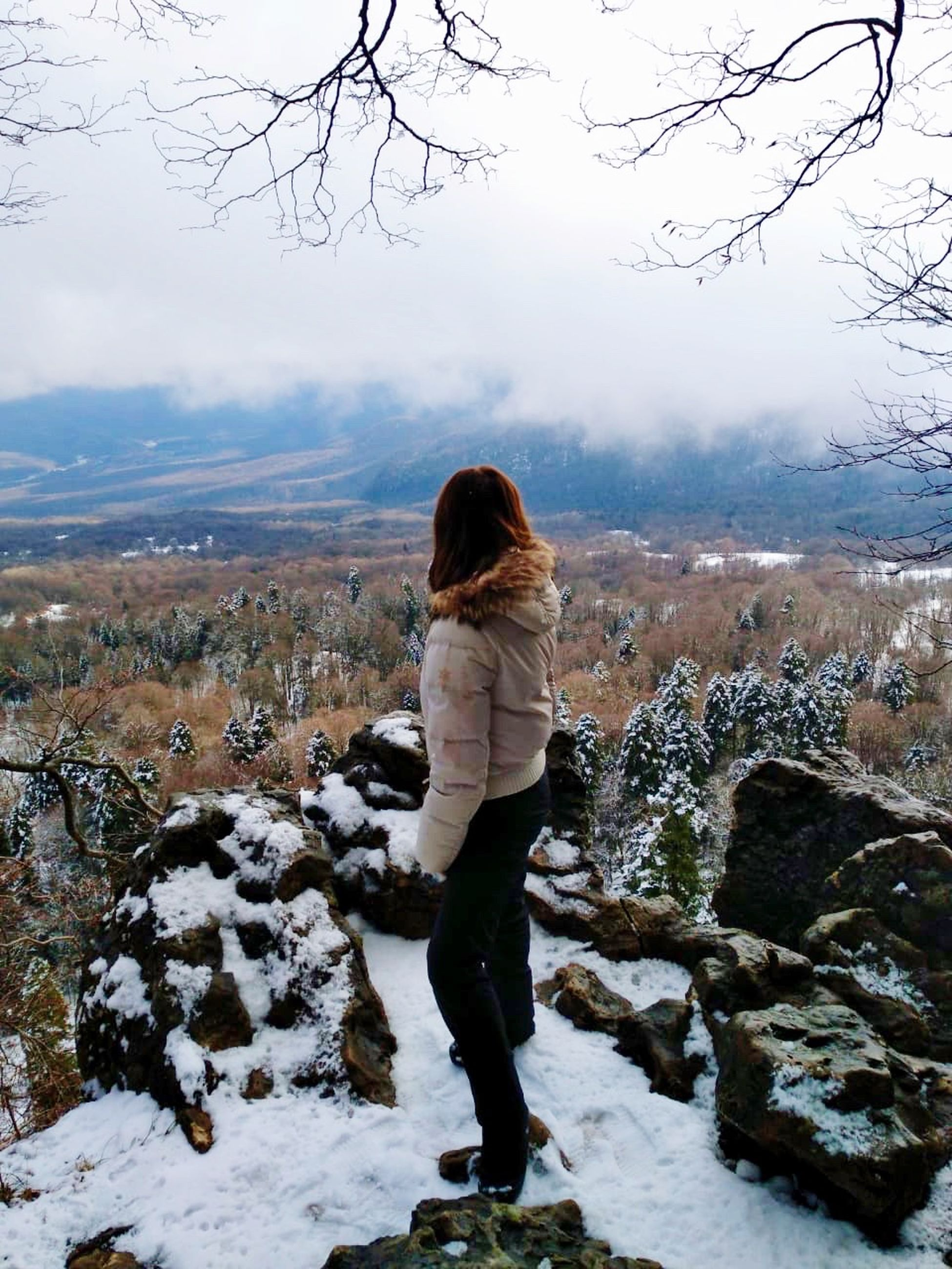 rear view, one person, real people, snow, leisure activity, winter, standing, lifestyles, cold temperature, beauty in nature, women, mountain, tree, nature, full length, day, scenics - nature, plant, warm clothing, hairstyle, outdoors, looking at view