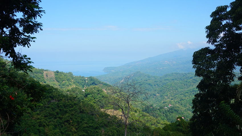 Beauty In Nature Blue Day Flores Green Color Growth Idyllic Indonesien Kelimutu Landscape Lush Foliage Mountain Mountain Range Nationalpark Nature No People Non Urban Scene Non-urban Scene Outdoors Remote Scenics Sky Tranquil Scene Tranquility Tree