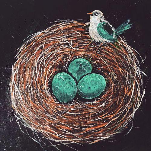 High angle view of bird nest