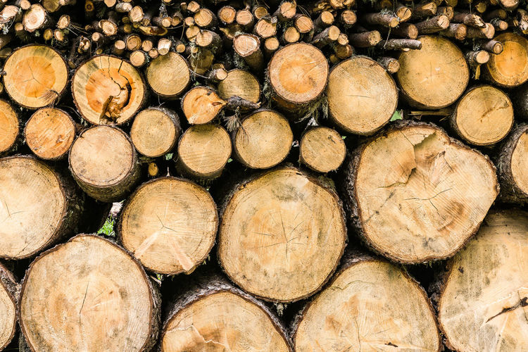Abundance Arrangement Backgrounds Brown Circle Close-up Deforestation Environmental Issues Firewood Forestry Industry Fossil Fuel Full Frame Heap In A Row Large Group Of Objects Log Lumber Industry No People Outdoors Pile Repetition Stack Timber Wood - Material Woodpile
