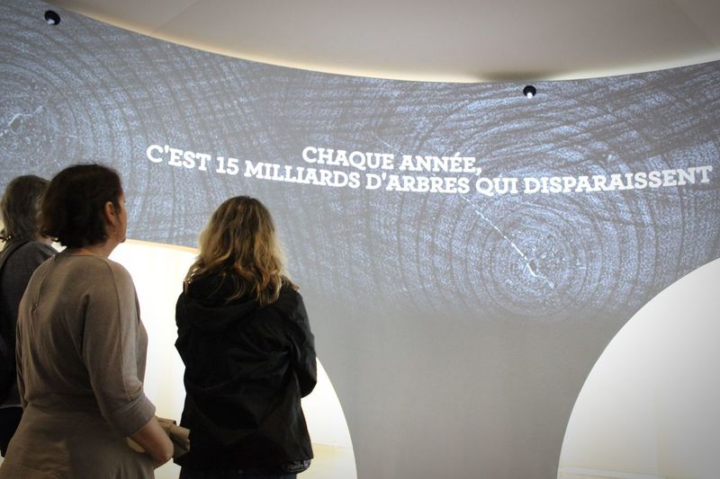 Musée de l'homme in Paris. It reads that each year, 15 billion trees vanish. This museum does a great job at making people more aware of what we are doing to the environment and how to help create a safer and healthier home🌎 Museedelhomme Museums Environment Earth Home Health EyeEm Paris France Openingday Savetheplanet Hello World Check This Out