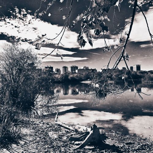 ___No debería y sin embargo, derrapo mi lengua por tus vientres.___ Naturaleza Landscape EyeEm Best Shots - Black + White Iphoneonly