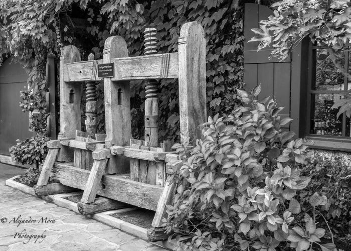 Old wine press in Napa, CA Wood - Material No People Leaf Day Architecture Outdoors Built Structure Tree Nature Black And White