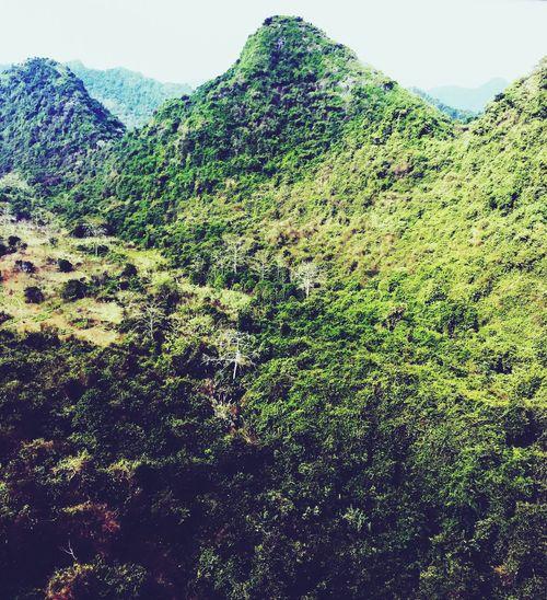 Beautiful Vietnam High Over The Greens