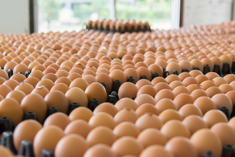Close-up of brown eggs for sale in store