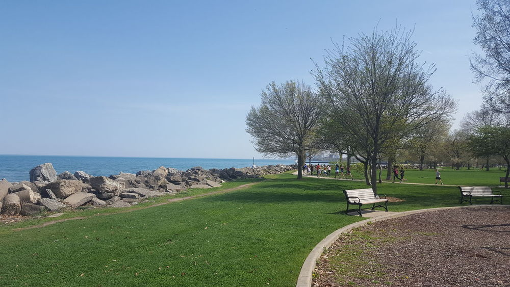 Clear Blue Sky Land Water And Sky Beauty In Nature Horizon Over Water Lakefront Park Lakeshore People In The Park People Running Tranquility