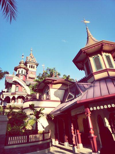 Disneyland Ng's TraveLog