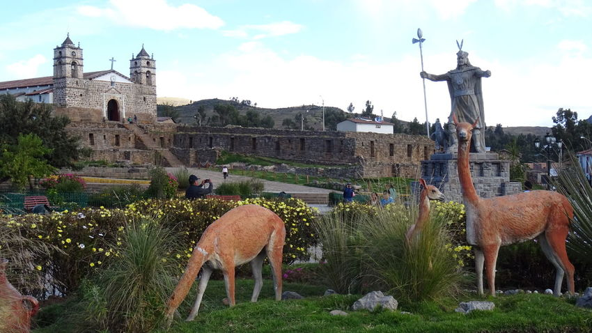 Sky Built Structure Animal Themes Outdoors No People Day Mammal Architecture Tree Building Exterior Grass Inca Ayacucho  Tourism Travel Church Peru Alpaca Camelidos Ayacucho  Travel Destinations Ayacucho