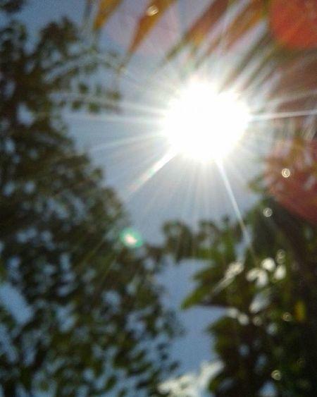 Dia soleado! Sunnyday