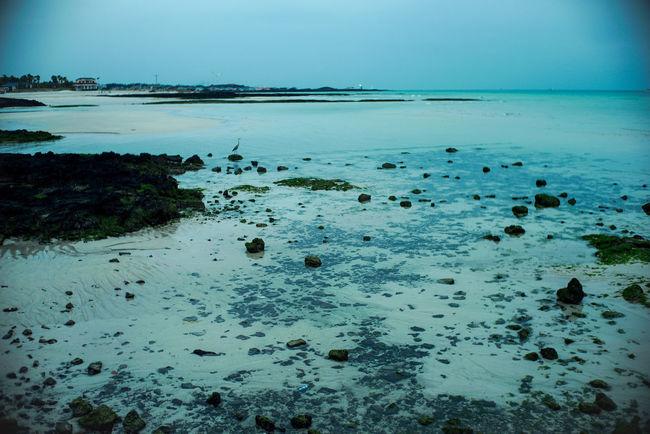 JEJU ISLAND  Blue Sea Dawn Green South Korea Nightphotography A7s Green Wave