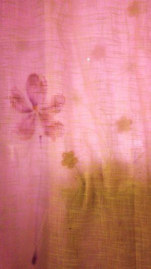 Curtain Paris