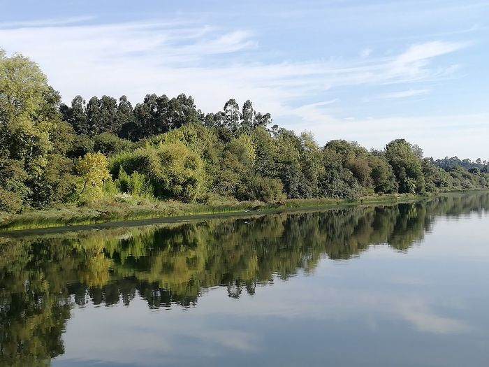 O Minho é lindo!! Minho Mirror River Riolima Tranquility Reflection Beauty In Nature Nature Water Boat Portugal Calm Tranquil Scene Tree