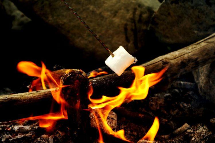 Night Flame No