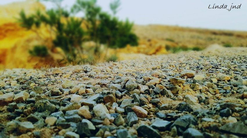 Close-up Family Focus Fun Green Mountain Rock - Object Smartphonephotography Trip Tunisia <3 Rondom Taking Photos Simplicity Summer ☀ No People Loving Nature Forgotten Places  Silence Outdoors EyeEm Thinking Wonderful
