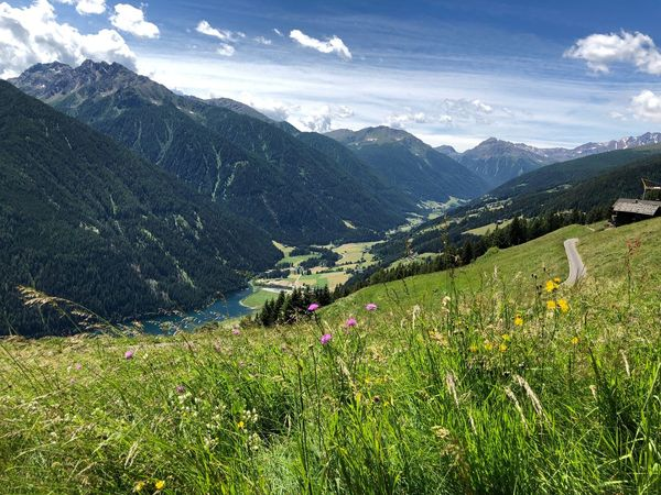 Ultental Italia South Tyrol Alto Adige Südtirol Italien Italy Beauty In Nature Scenics - Nature Mountain Growth Plant Green Color Tranquil Scene Environment Land Landscape Tranquility Nature Mountain Range Field Tree Day Agriculture Idyllic