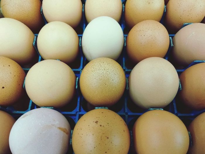 Kitchen Cooking Chicken - Bird Chicken Eggs Protein Healthy Eating Healthy Eating Healthy Lifestyle Healthy Food Food Food And Drink Healthy Eating Egg Full Frame Freshness No People Indoors  Large Group Of Objects Egg Carton Backgrounds Close-up Ready-to-eat Food Staple Day