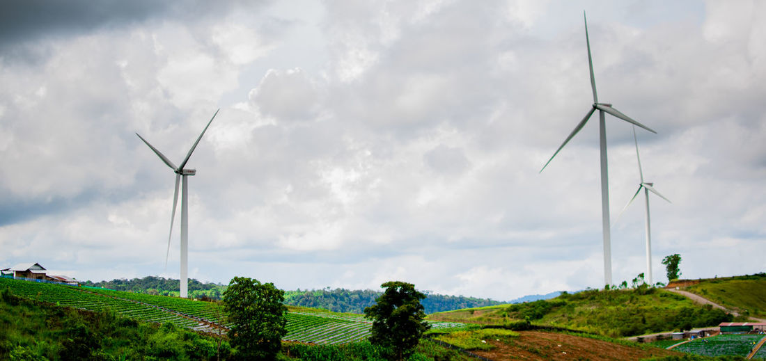 Environmental Conservation Wind Turbine Renewable Energy Turbine Alternative Energy Fuel And Power Generation Environment Wind Power Landscape Sky Plant Technology Nature Rural Scene Tree Land Cloud - Sky Day Field Scenics - Nature Sustainable Resources Outdoors No People Wind Electricity