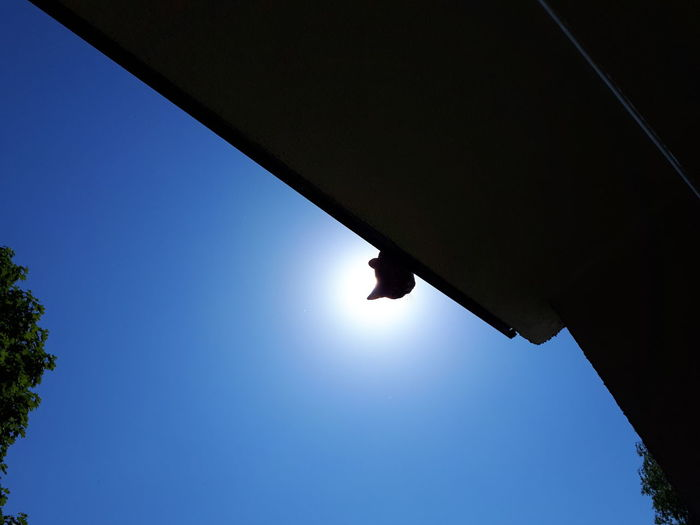 Low angle view of silhouette person against clear blue sky