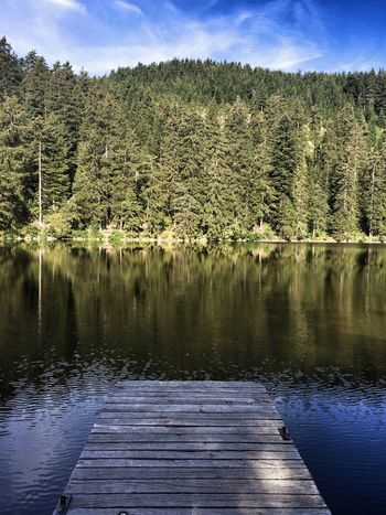 Lake Selva Negra Germany Schwarzwald