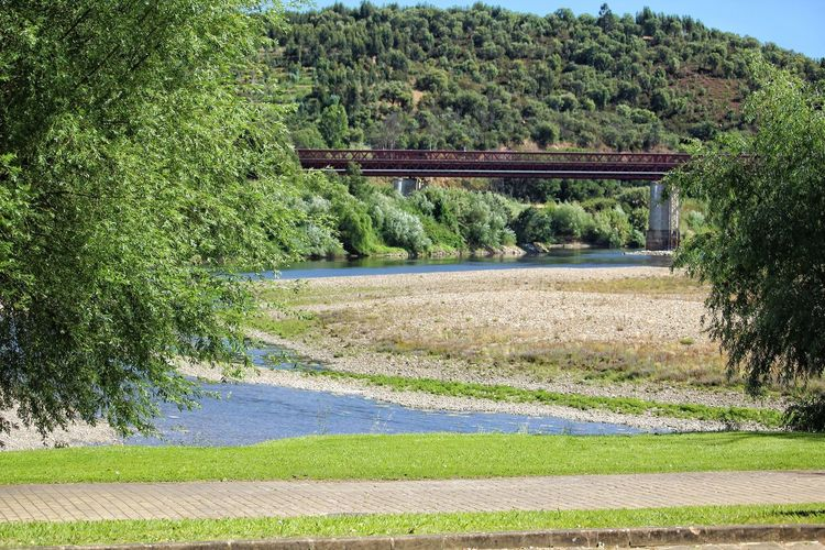 confluence of the river Zezere with the river Tagus. Rivers Bridge Tree Agriculture Rural Scene Field Grass Plant Landscape Green Color Sky
